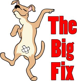 BigFix1