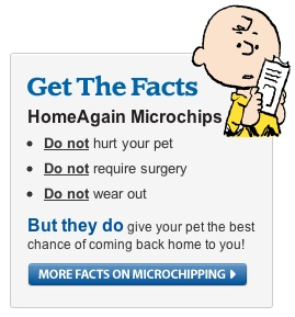 homeagain-microchips-facts